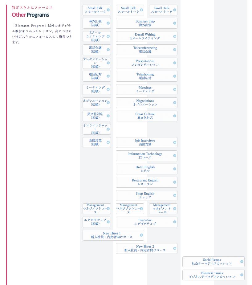 ビズメイツ other programs