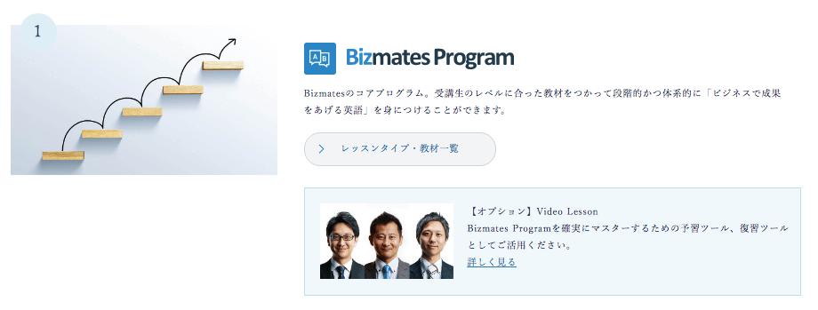 ビズメイツ プログラム